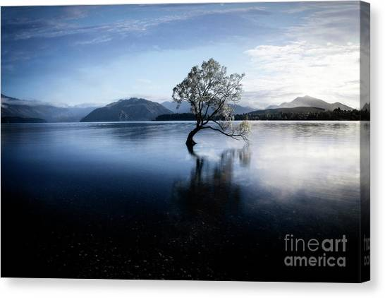 Canvas Print featuring the photograph Lone Tree 2 by Scott Kemper