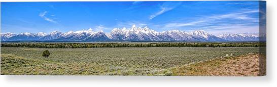 Lone Tree And The Tetons Canvas Print