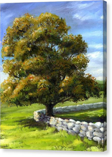 Lone Tree And Wall Canvas Print