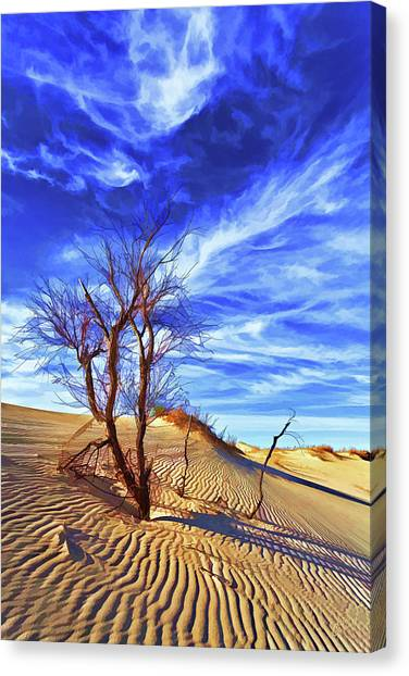 Lone Tree At Sandhills Canvas Print