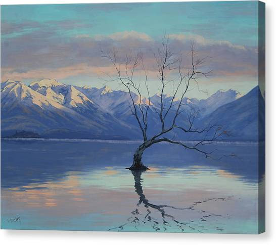 New Zealand Canvas Print - Lone Tree by Graham Gercken