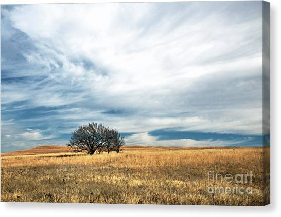 Late Autumn In The Flint Hills Canvas Print