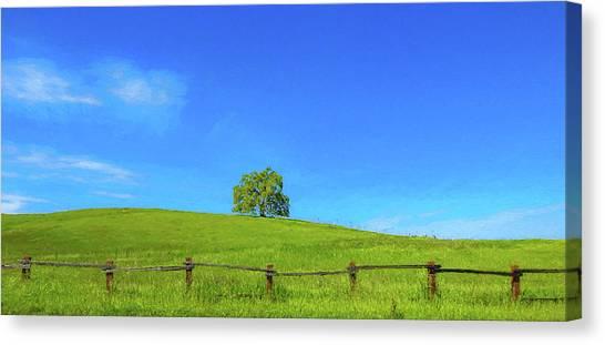 Lone Tree On A Hill Digital Art Canvas Print