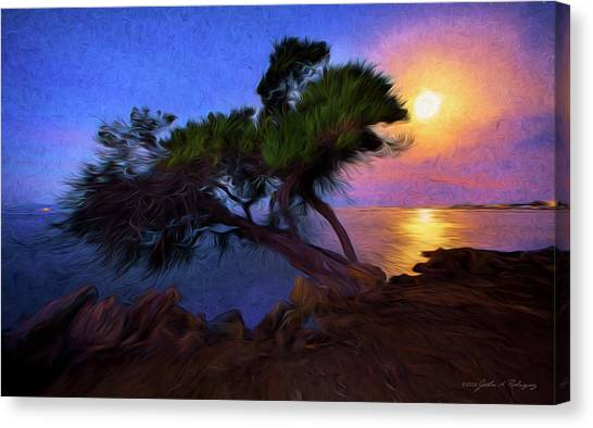 Lone Tree On Pacific Coast Highway At Moonset Canvas Print