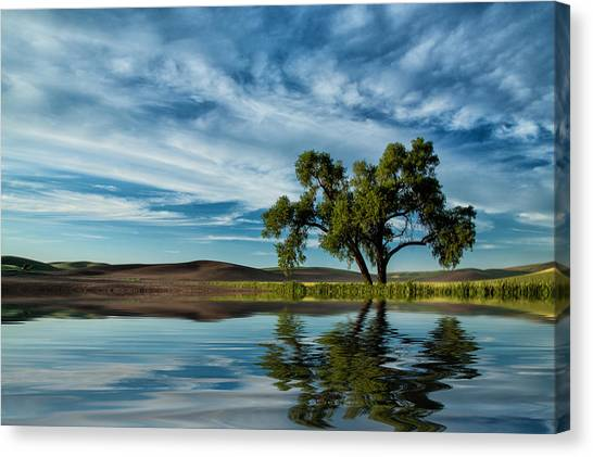 Lone Tree Pond Reflection Canvas Print