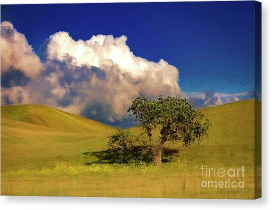Lone Tree With Storm Clouds Canvas Print