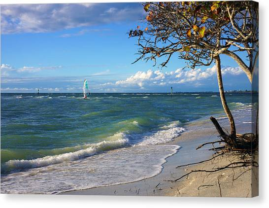 Lone Windsurfer At Wiggins Pass Canvas Print