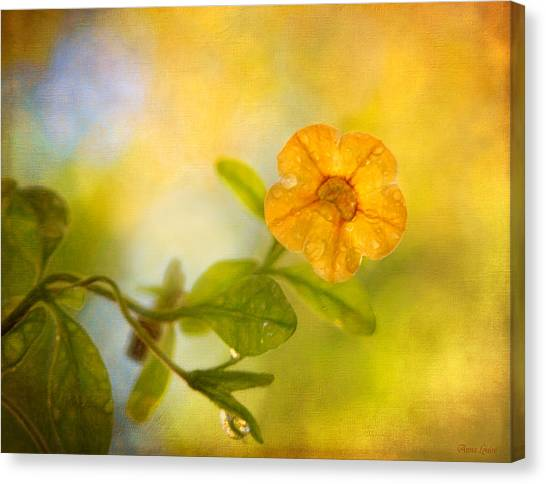 Lone Yellow Flower Canvas Print
