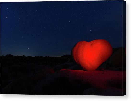 Canvas Print featuring the photograph Lonely Heart   by Tassanee Angiolillo