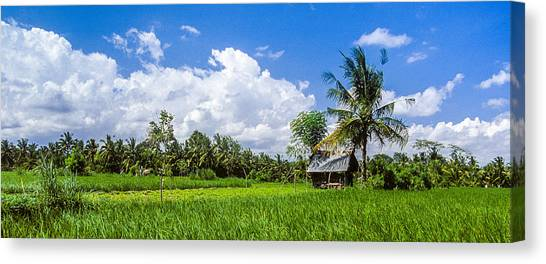 Canvas Print featuring the photograph Lonely Rice Hut by T Brian Jones
