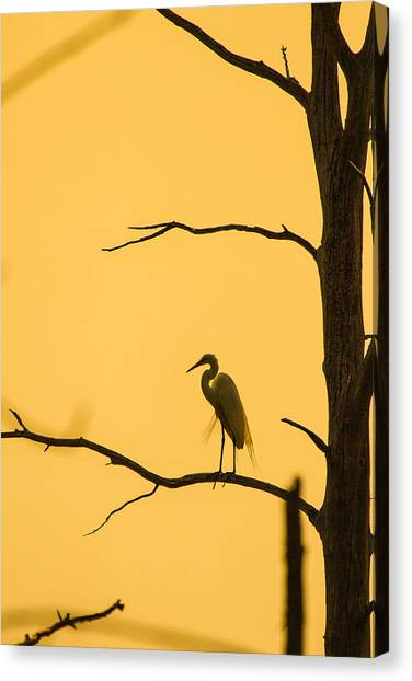 Lonely Silhouette Canvas Print