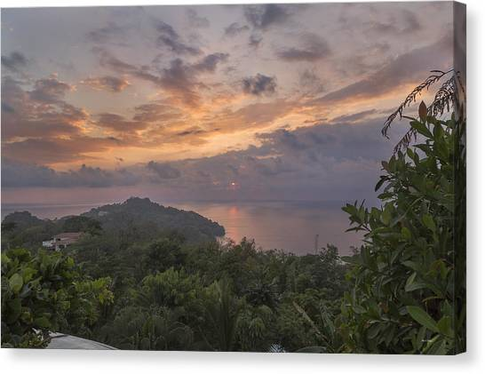 Costa Rican Canvas Print - Lonely Without You by Betsy Knapp