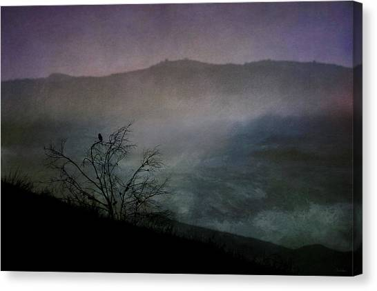 Lonesome Point Canvas Print