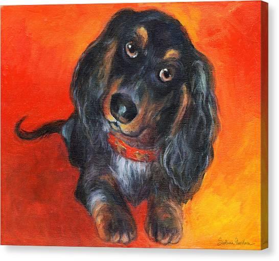 Dachshunds Canvas Print - Long Haired Dachshund Dog Puppy Portrait Painting by Svetlana Novikova