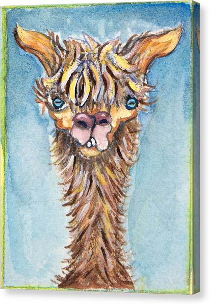 Long Neck Alpaca Canvas Print