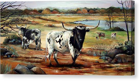 Longhorn Land Canvas Print