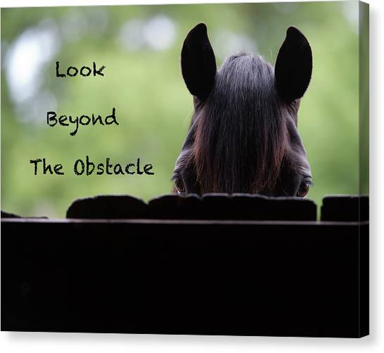 Canvas Print - Look Beyond The Obstacle by Shawn Hamilton