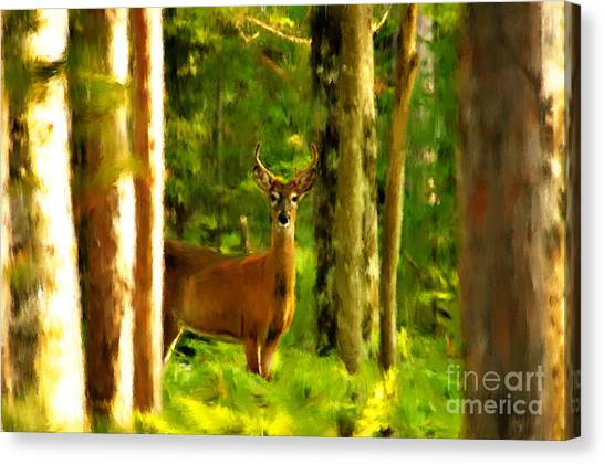 Look Deep Into Nature Canvas Print