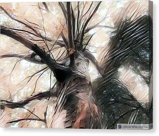 Lookin Up The Tree #digitalart Canvas Print by Michal Dunaj