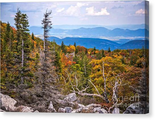 Looking East From Bear Rocks 4290c Canvas Print
