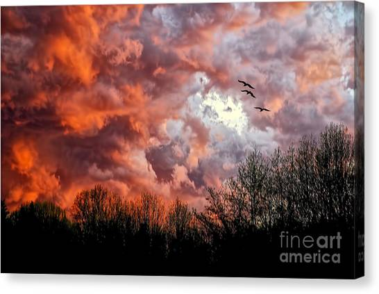 Sunset Horizon Canvas Print - Looking For Trouble by Lois Bryan