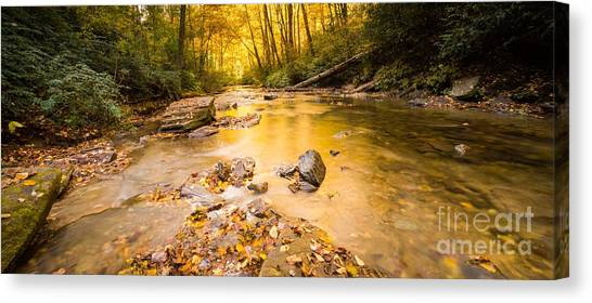 Appalachian Mountains Canvas Print - Looking Glass Creek by DiFigiano Photography