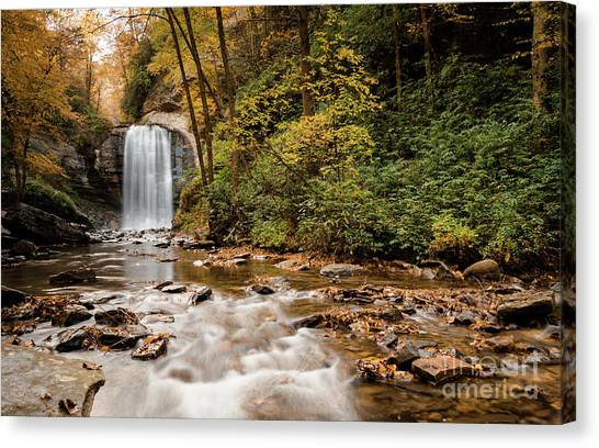 Pisgah National Forest Canvas Print - Looking Glass Falls by DiFigiano Photography