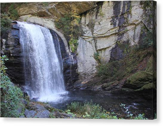 Looking Glass Falls Side View Canvas Print