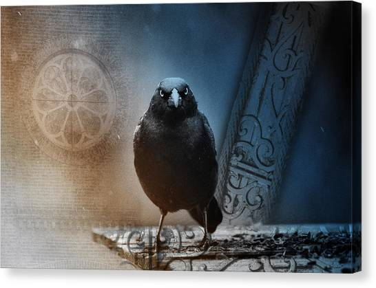 Blackbirds Canvas Print - Looking Through You by Susan Capuano