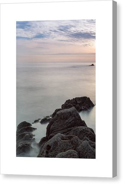 Looking To The Distance Canvas Print