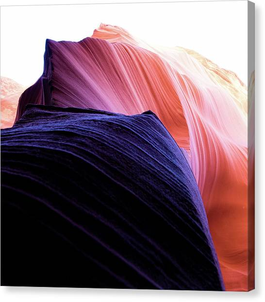 Canvas Print featuring the photograph Looking Up - Dark To Light by Stephen Holst