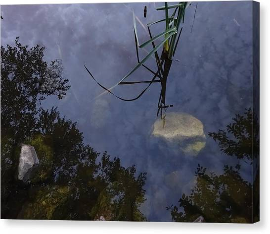 Canvas Print - Looking Up While Looking Down by Red Cross