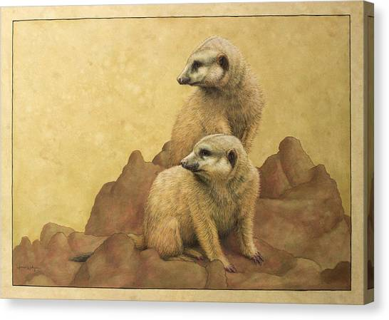 Meerkats Canvas Print - Lookouts by James W Johnson