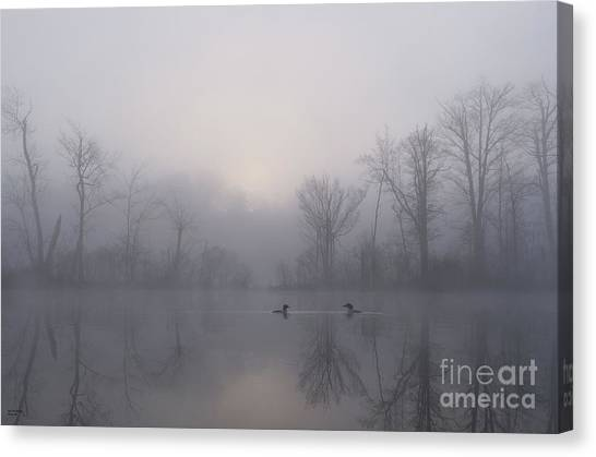 Loons Canvas Print - Loons In The Fog by Jan Mulherin