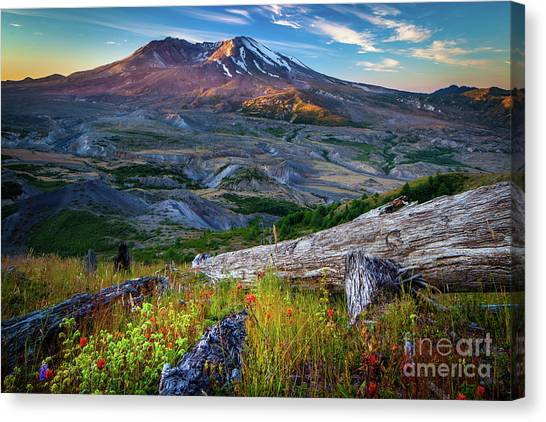 Mount St. Helens Canvas Print - Loowit by Inge Johnsson
