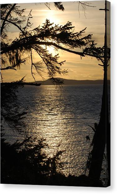 Lopez Island Sunset Canvas Print