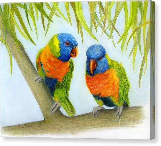 Lorikeet Pair Canvas Print