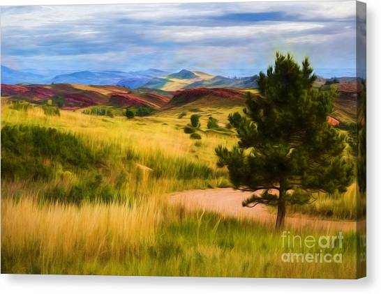 Colorado State University Canvas Print - Lory State Park Impression by Jon Burch Photography