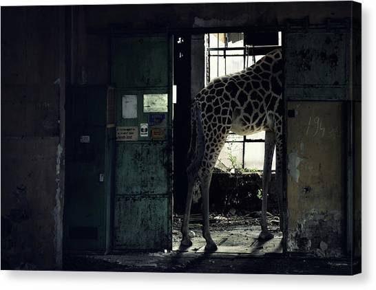 Factories Canvas Print - Lost Animals -  Series Nr.2 by Zoltan Toth