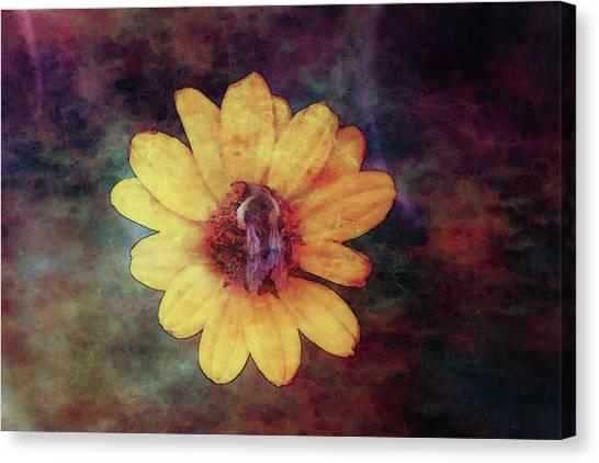 Lost Autumn Veterans 5670 Ldp_2 Canvas Print