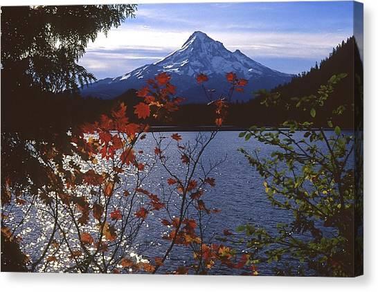 Lost Lake Canvas Print