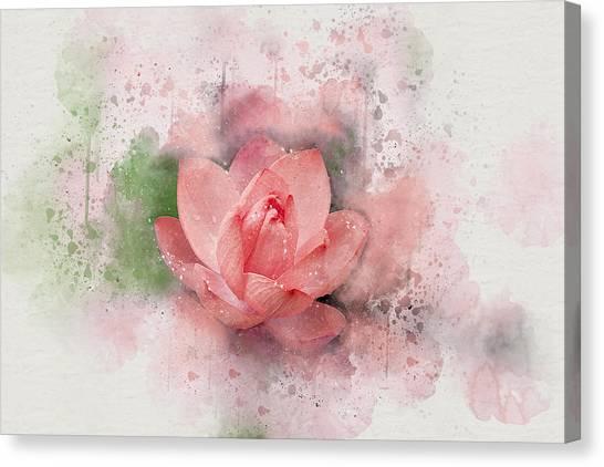 Lotus 8 Canvas Print