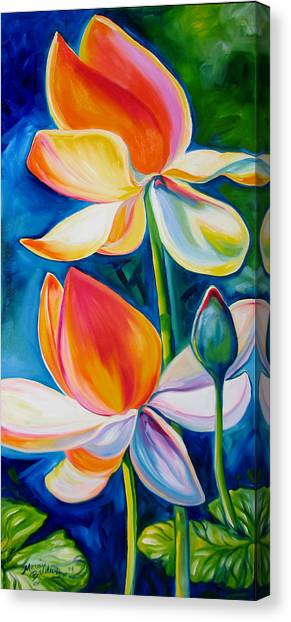 Lotus Blossoming Canvas Print by Marcia Baldwin