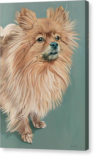 Louie The Majestic Canvas Print