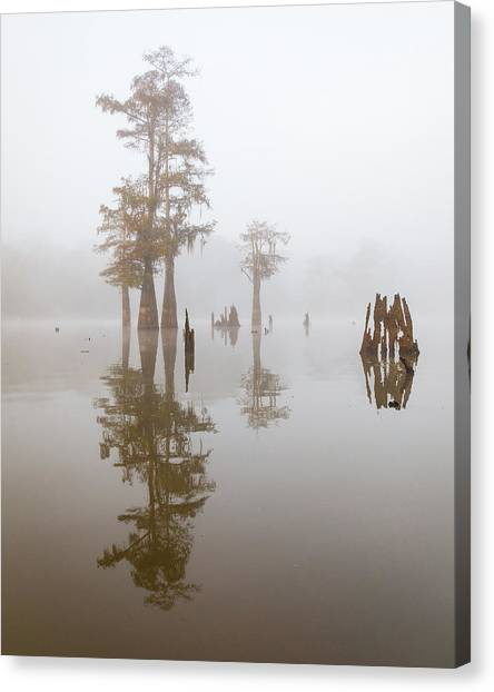 Atchafalaya Basin Canvas Print - Louisiana Cypress Swamp On A Foggy Morning by Bill Swindaman