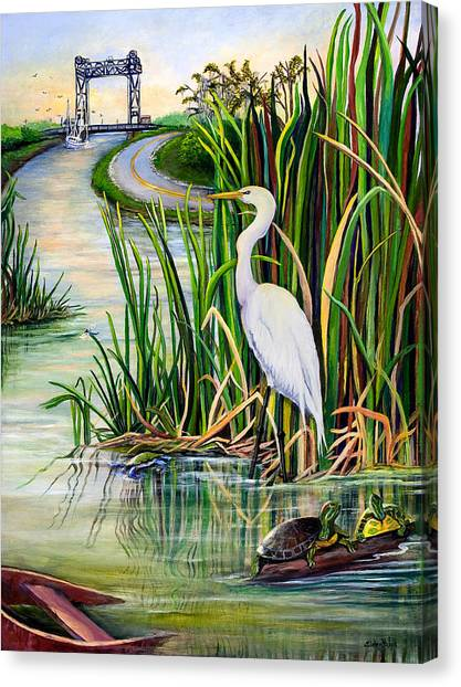 Egrets Canvas Print - Louisiana Wetlands by Elaine Hodges