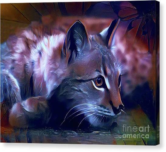 Lovable Feline Canvas Print