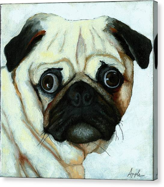 Love At First Sight - Pug Canvas Print by Linda Apple
