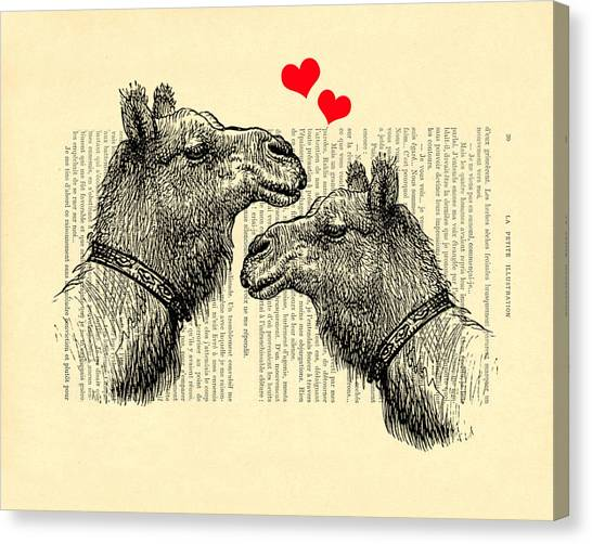 Wedding Gift Canvas Print - Love Camels by Madame Memento
