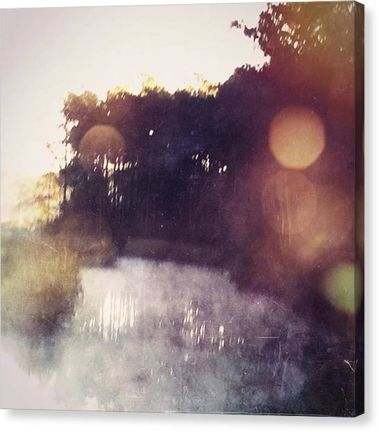 Swamps Canvas Print - Love Cooler Mornings When The Mist by Joan McCool